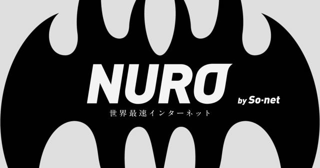 NURO光の戸建てタイプとは?