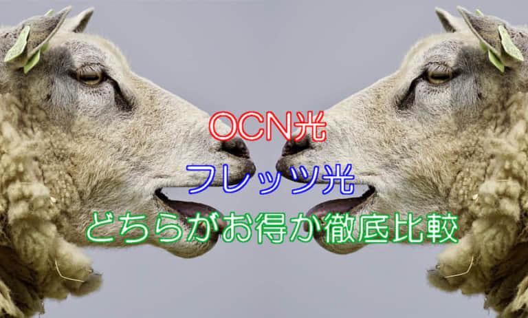 OCN光とフレッツ光どっちが良い?徹底比較します!
