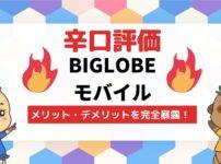 BIGLOBE MOBILE(ビッグローブモバイル)を7項目で辛口評価!メリットとデメリットを完全暴露