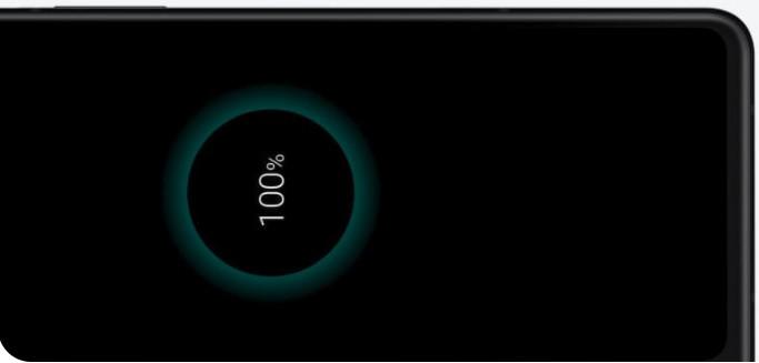 Galaxy Z Fold3 5G-Battery